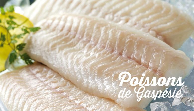 Poissons de Gaspésie